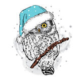 Owl in Christmas hat. Vector illustration for a card or poster. Festive pattern. Royalty Free Stock Image