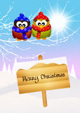 Owl at Christmas Royalty Free Stock Photos