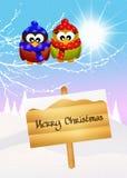 Owl at Christmas Royalty Free Stock Photos