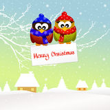 Owl at Christmas Royalty Free Stock Photography
