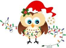 Owl with Christmas Lights Stock Photo