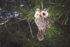 Owl christmas toy Stock Image
