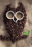 Owl coffee Royalty Free Stock Images