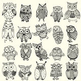 Owl collection Royalty Free Stock Photos