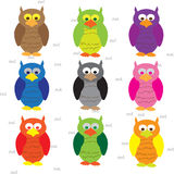 Owl collection - illustration Royalty Free Stock Images