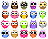 Owl collection Royalty Free Stock Photography