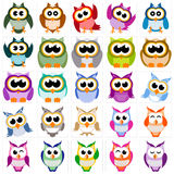 Owl collection Stock Image