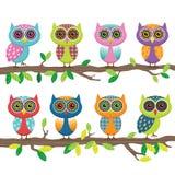 Owl Collection sveglio Immagine Stock