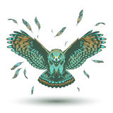 Owl color illustration Royalty Free Stock Image