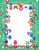 Owl color play frame. This illustration is drawing owl color play green frame in white color template Royalty Free Stock Photo