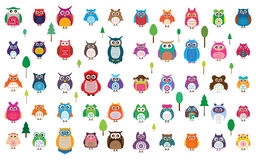 Owl 50 color set. This illustration is design and drawing 50 random color owl in object and white color background Stock Photos