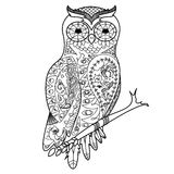 Owl coloring book for adults vector Stock Photography