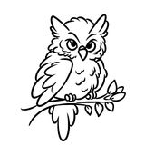 Owl Coloring Pages Royalty Free Stock Image
