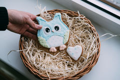 Owl cookies in female hand Royalty Free Stock Image