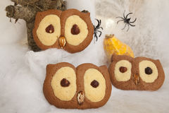 Owl cookies royalty free stock photo