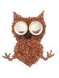 Owl from the corns of coffee. Isolated on a white background Stock Image