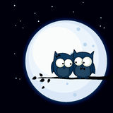 Owl couple. Valentine's Day card with cute owl couple sitting on a branch, with the moon in the background Stock Image
