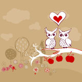Owl couple on apple tree Royalty Free Stock Image