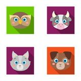 Owl, cow, wolf, dog. Animal`s muzzle set collection icons in flat style vector symbol stock illustration web. Stock Photos
