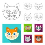 Owl, cow, wolf, dog. Animal`s muzzle set collection icons in outline,flat style vector symbol stock illustration web. Owl, cow, wolf, dog. Animal`s muzzle set Stock Images