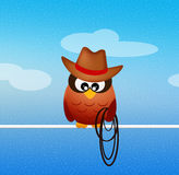 Owl cowboy Royalty Free Stock Images