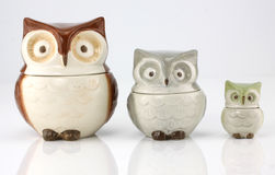Owl cups stock photos