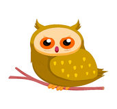 Owl so cute Stock Photo
