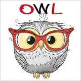 Owl. Cute Owl isolated on a white background royalty free illustration