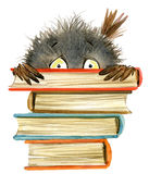Owl. cute owl. school books illustration. cartoon bird stock illustration