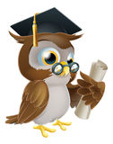 Owl with degree or qualification. An illustration of a cute owl in glasses and graduate or convocation hat holding a rolled up scroll diploma, certificate or Royalty Free Stock Images