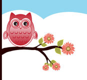 Owl design Stock Image