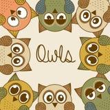 Owl design Royalty Free Stock Image
