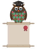 Owl diploma Royalty Free Stock Images