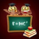 Owl diploma Stock Photos