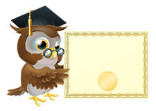 Owl diploma certificate background. Illustration of a cute owl character in professor's or graduate's mortar board pointing at a diploma certificate background Stock Photography