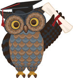 Owl with diploma. Wise owl standing with diploma and hat  illustration Royalty Free Stock Photos