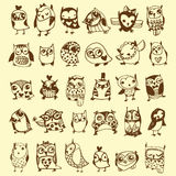 Owl Doodle Collection Arkivfoto