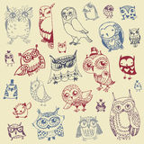 Owl Doodle Collection - dragen hand - vektor Royaltyfria Bilder