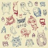 Owl Doodle Collection - mão tirada - vetor Imagens de Stock Royalty Free