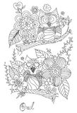 Owl Doodle mit Blumen-Vektor Stockfotos