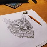Owl Drawing Stockfotografie