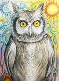 Owl drawing in color pencil with moon and sun. Hand drawn color pencil image of a wide eyed owl perched in front of the sun and the moon Royalty Free Stock Image