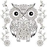 Owl drawing for coloring antistress. royalty free stock photos