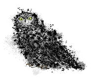 Owl drawn in ink Royalty Free Stock Image
