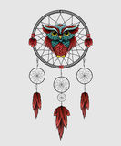 Owl with Dreamcatcher on a white background. Royalty Free Stock Image