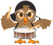 Owl drummer. Owl beats the drum Stock Photo