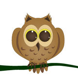 Owl, eagle owl. Brown owl on a branch siding Royalty Free Stock Photos