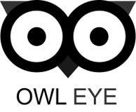 Owl Eye stock illustratie