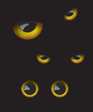 Owl eyes in the dark. Background Stock Photos