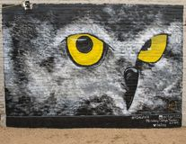 Owl Eyes väggväggmålning av Ashley Caitlyn Torres, djupa Ellum, Texas Arkivbild